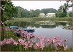 천리포수목원 호수 전경